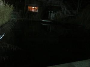 езерото на крокодилите през нощта