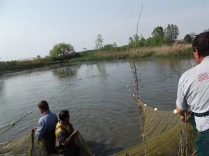 улов на езерните рибки
