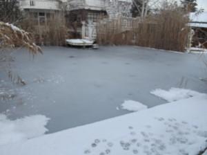 замръзналото езеро на крокодилите