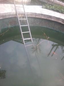 стълба в езерото