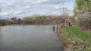 риболов на хибриден толстолоб