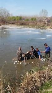 изваждане рибата от зимния басейн